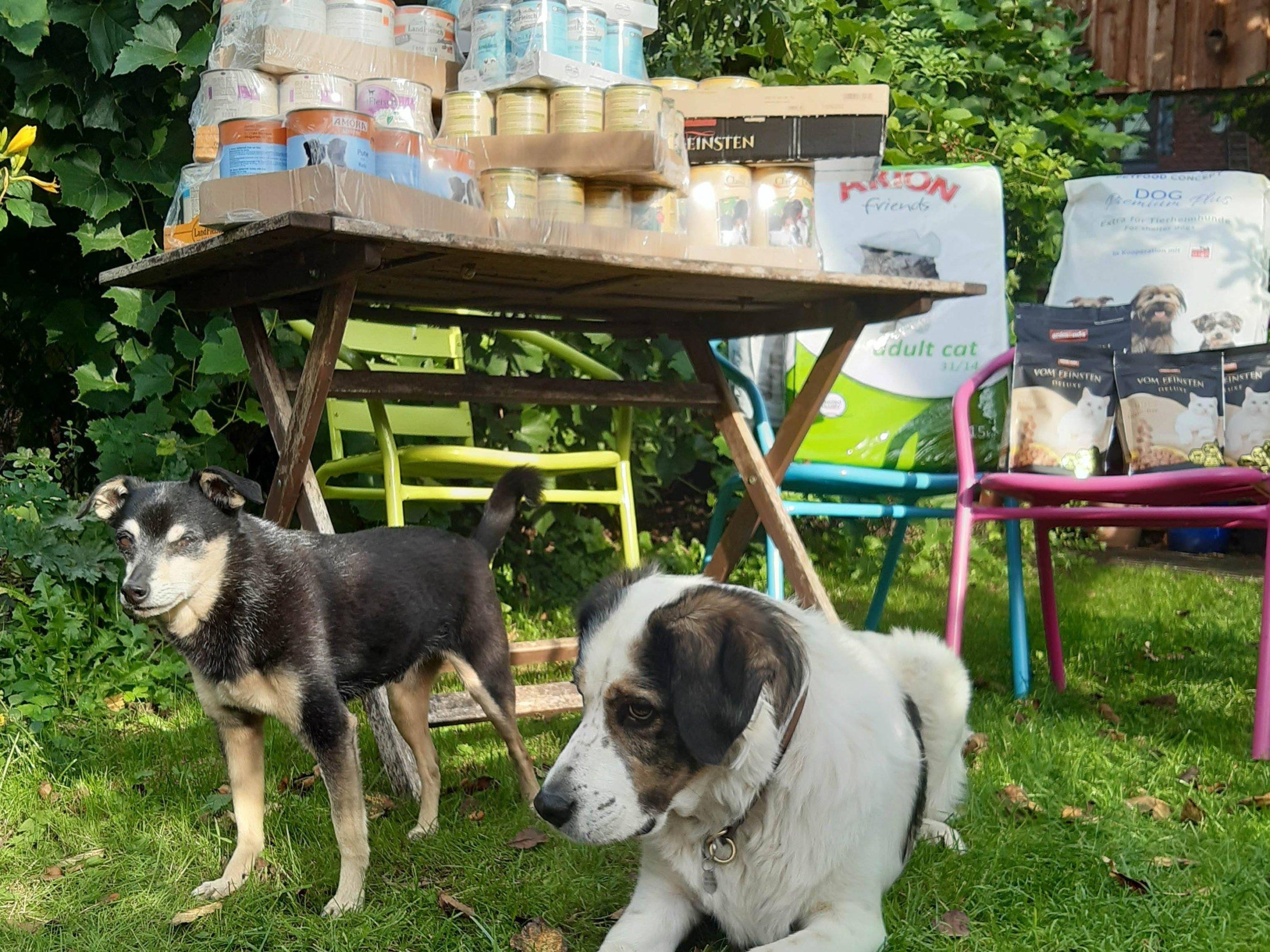 Tierhilfe Fortuna eV_WL_Deutschland (6)