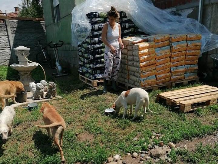 Tierhilfe-KowaNeu eV_Corona_Serbien (3)