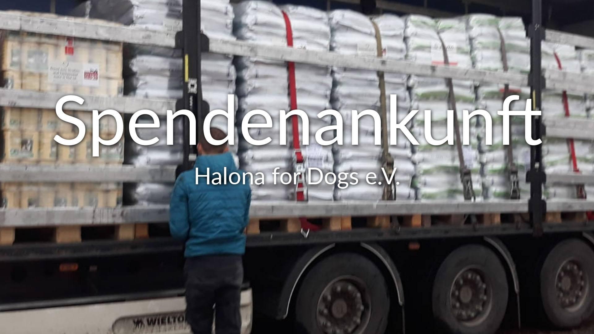 Halona for Dogs e.V_ThdM September Griechenland_Thumbnial