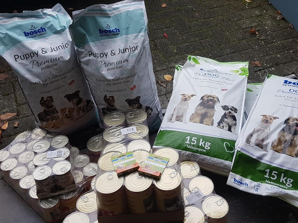 Hundeschnauzen in Not eV_WL_Deutschland1