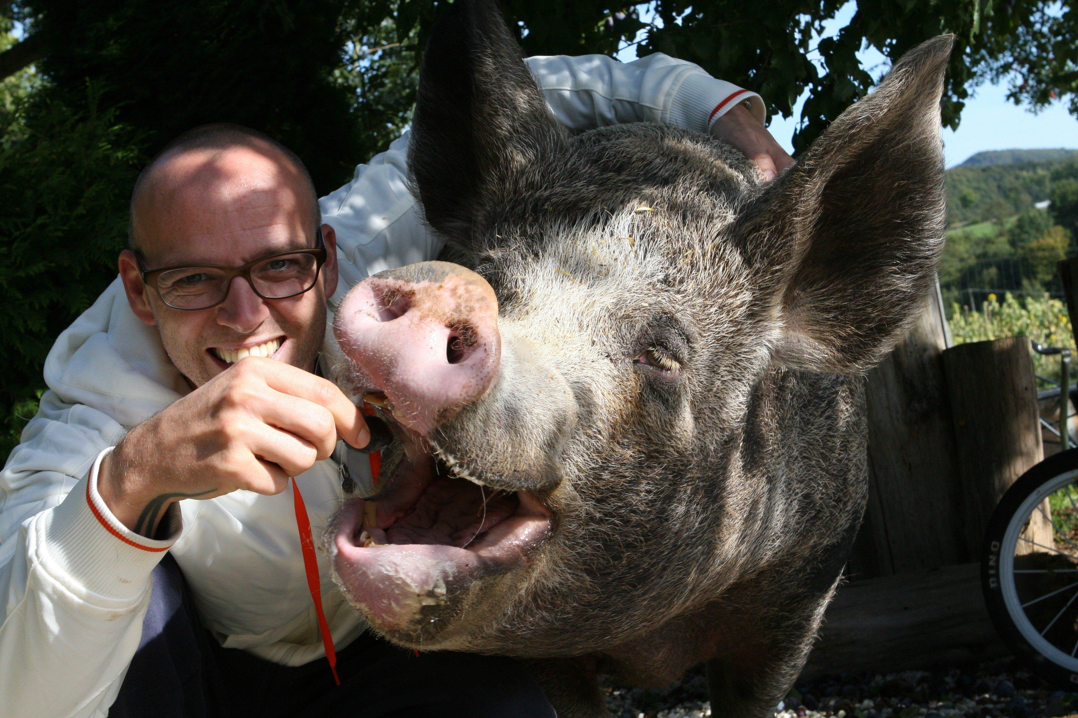 Thomas-D-mit-Schwein