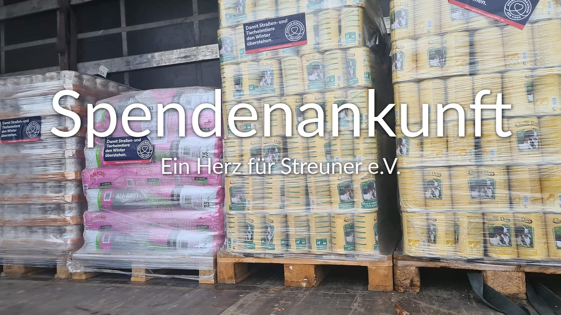 Ein Herz für Streuner_SM2020_Rumänien_thumbnail