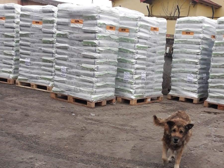 Halona for Dogs eV_ThdM September 2020_Rumänien36