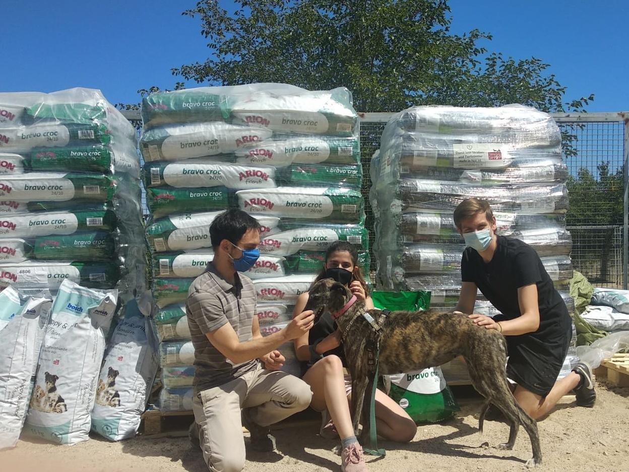 Tierschutz Spanien eV_Galgo Aktion_Spanien (3)
