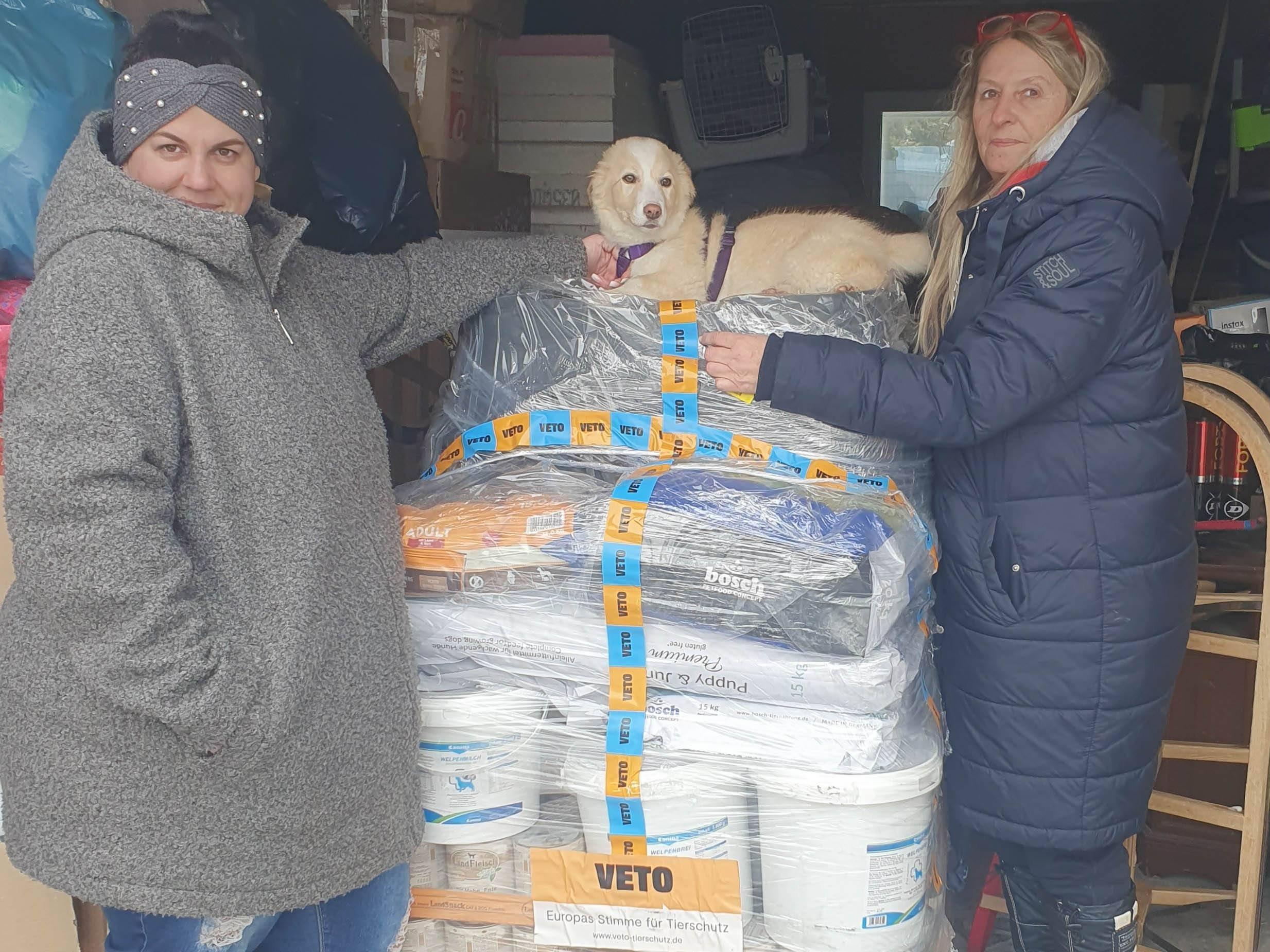 Homeless Dogs Romania eV_WL_RO8