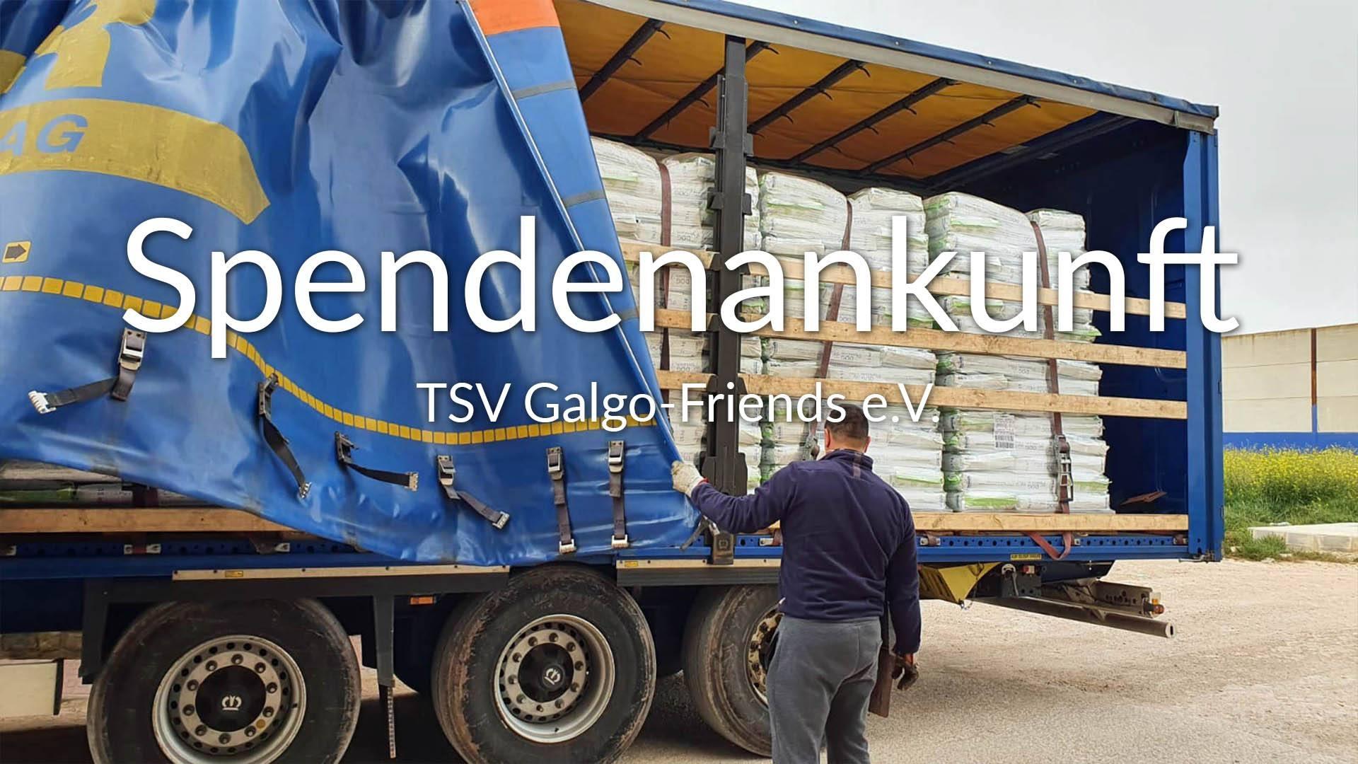 TSV Galgo-Friends eV_Thumbnail