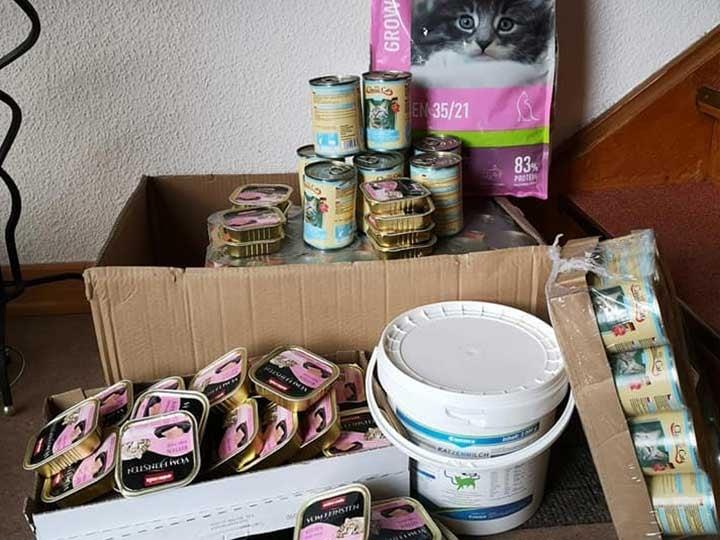 Katzenhilfe-Langenau-e.V.--DE-WL-6