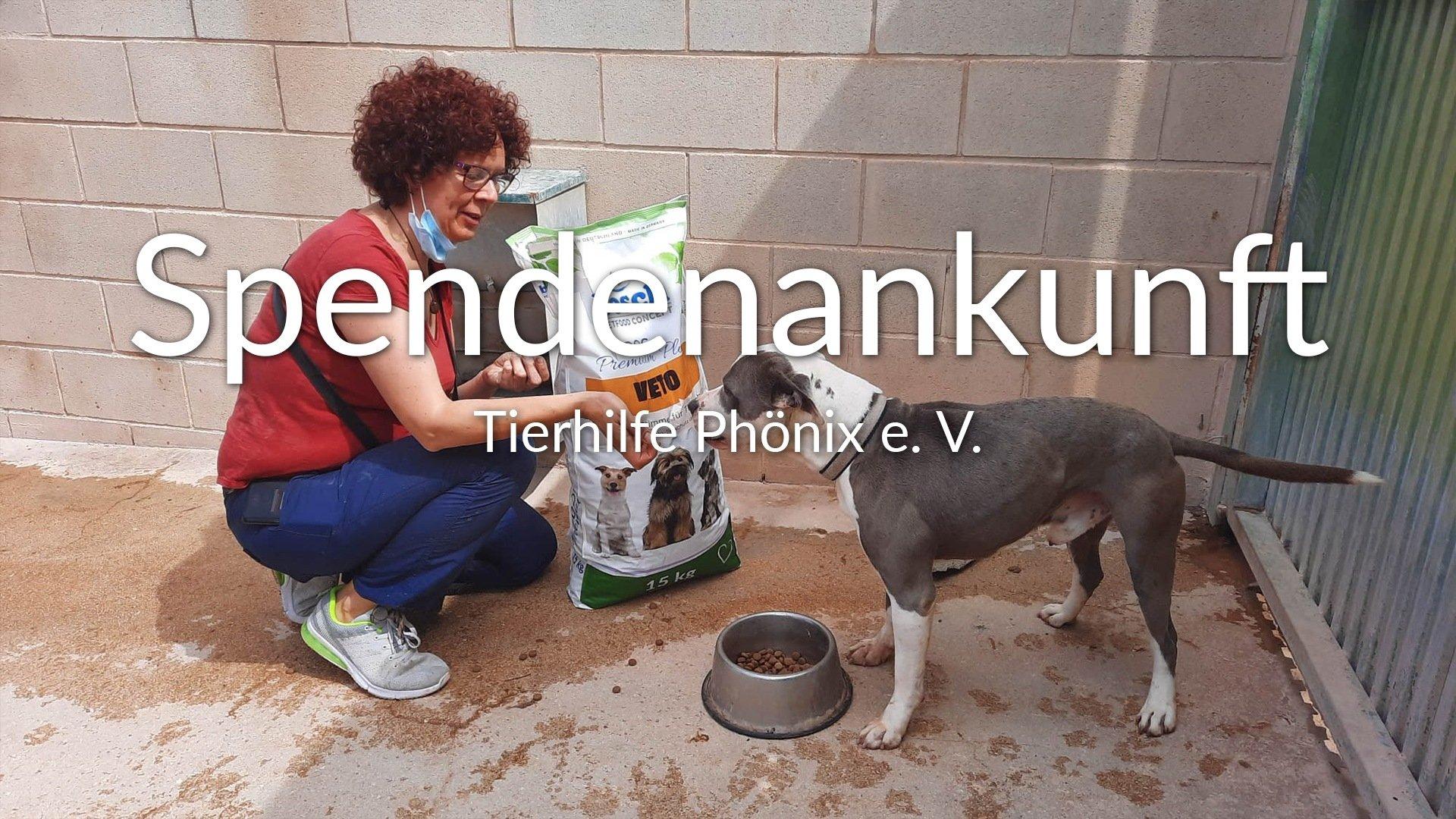 Tierhilfe Phönix eV_Thumbnail