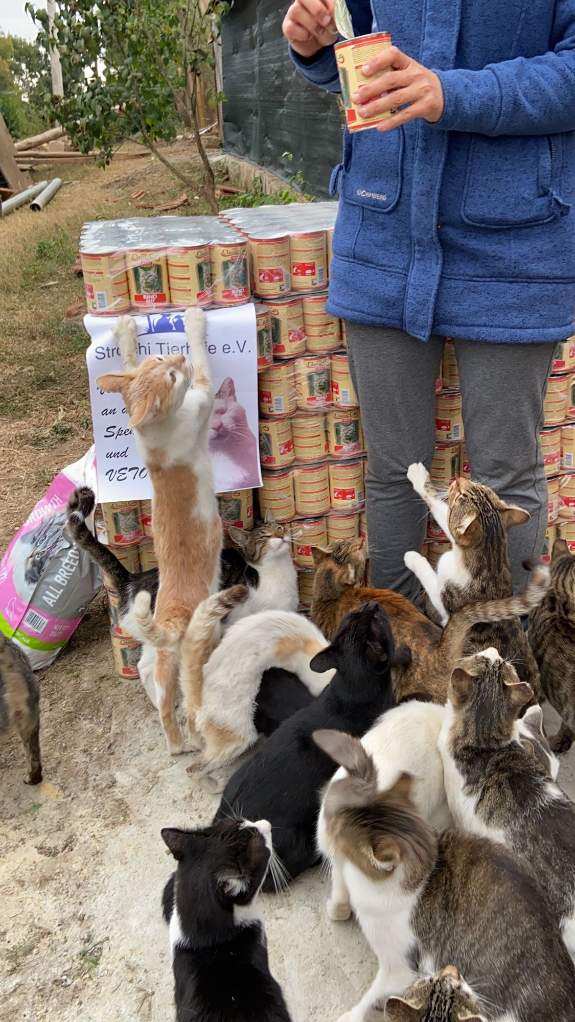 Strolchi Tierhilfe eV_SfS21_Bulgarien15