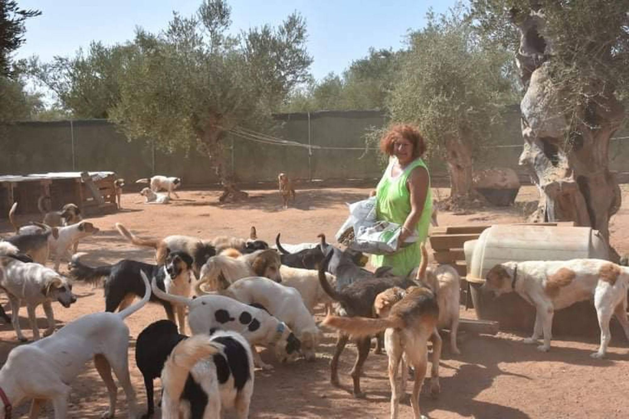 Verein für hilfebedürftige Tiere_SfS21_GR11