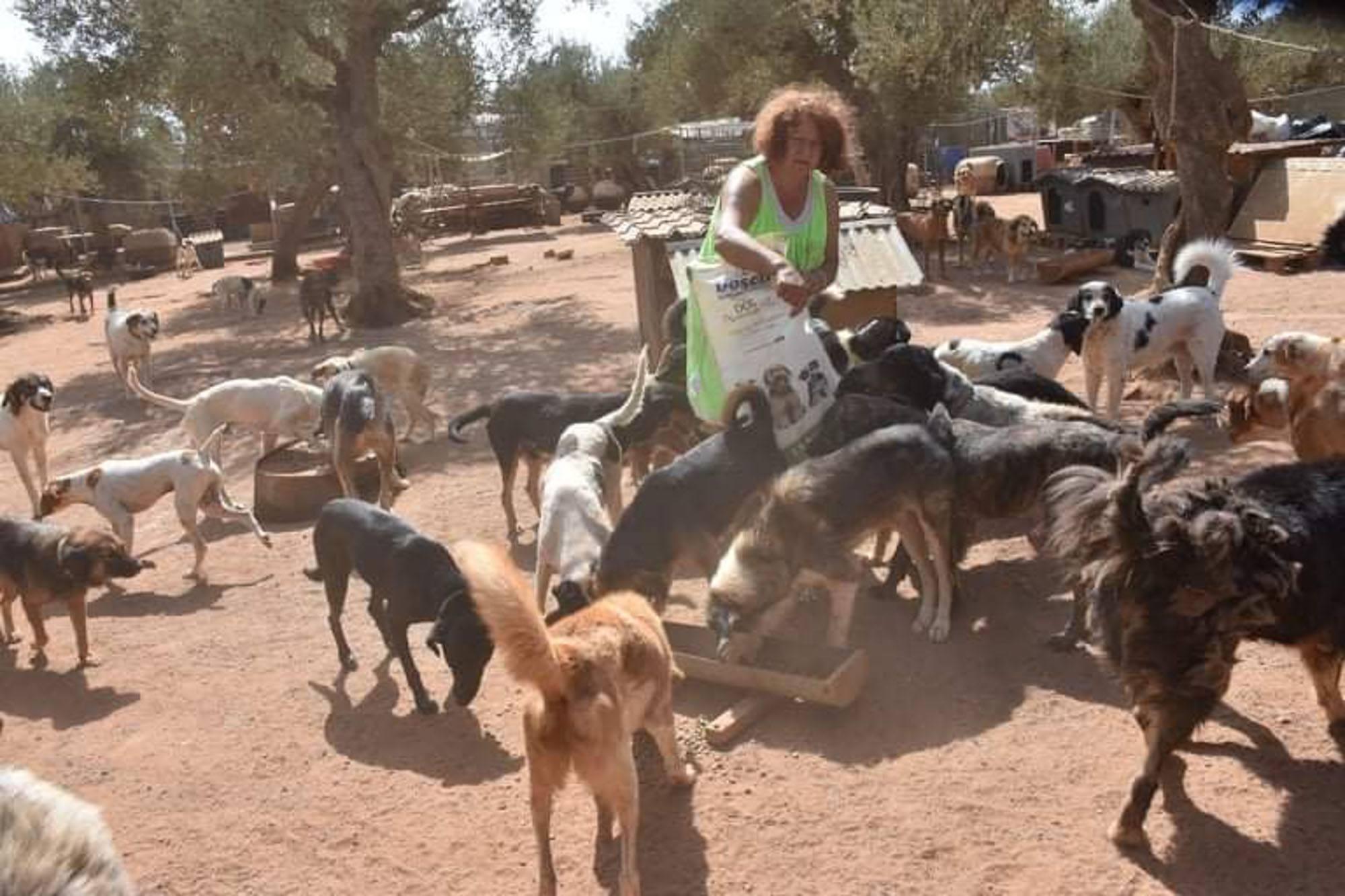 Verein für hilfebedürftige Tiere_SfS21_GR21