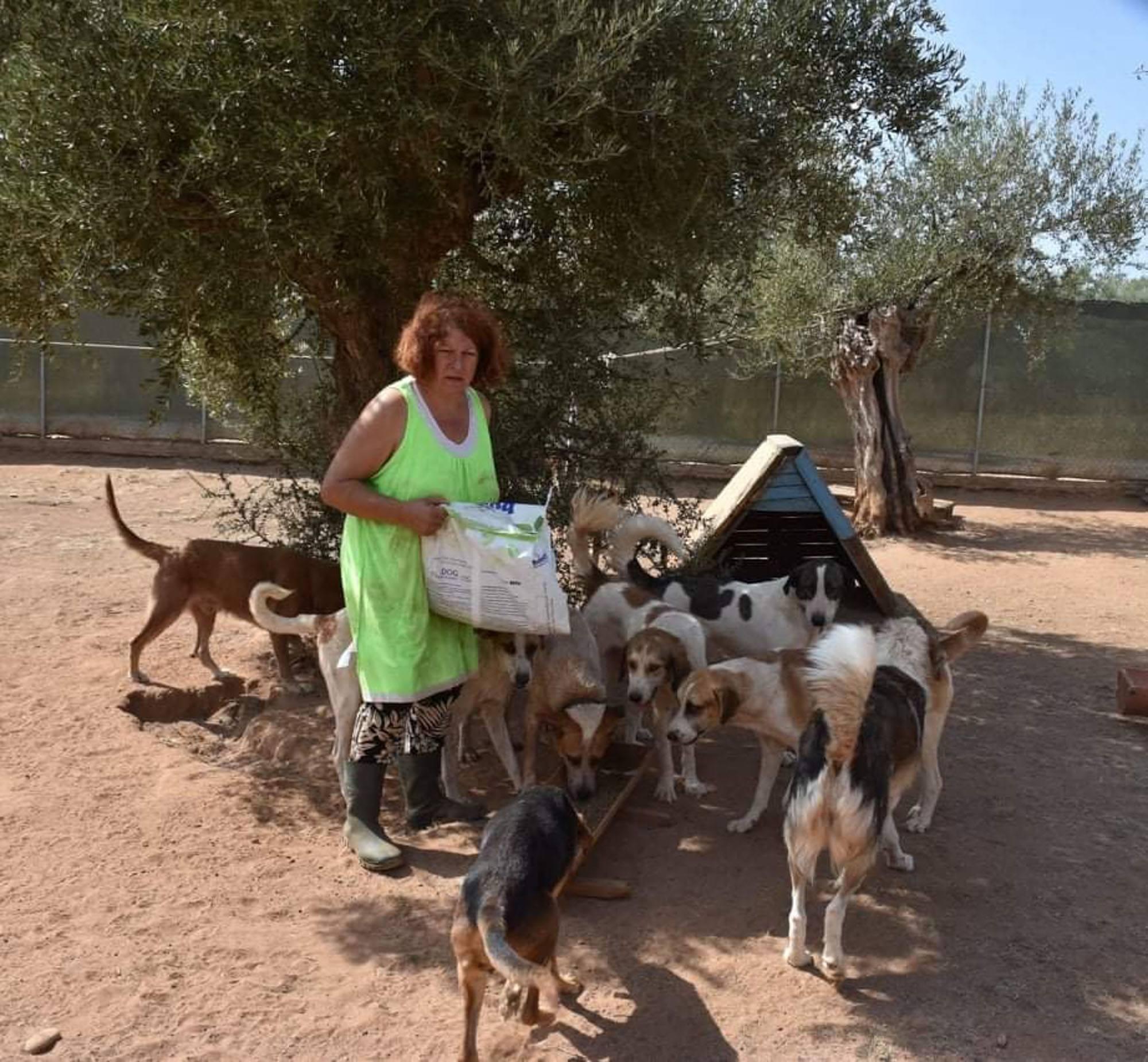 Verein für hilfebedürftige Tiere_SfS21_GR3